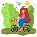La muchacha monta una bicicleta con una cesta abajo de la calle Ejemplo en estilo plano libre illustration