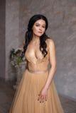 La muchacha morena en un vestido lujoso Imágenes de archivo libres de regalías