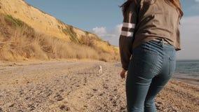 La muchacha morena joven con el pelo largo asiste en la playa del mar con la cámara lenta del perro blanco de Japón almacen de metraje de vídeo