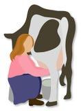 La muchacha ordeña la vaca Imagen de archivo