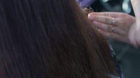 La muchacha peinó el pelo oscuro y el corte largos hermosos con el primer de las tijeras metrajes