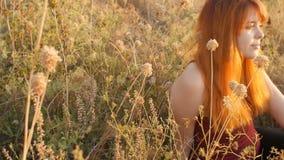 La muchacha pelirroja hermosa se sienta en la tierra en un campo entre las flores secadas y disfruta de la naturaleza en la puest almacen de video