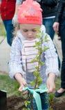La muchacha planta el árbol Imágenes de archivo libres de regalías