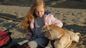 La muchacha preescolar de la muchacha en la playa alimenta el perro Primavera metrajes
