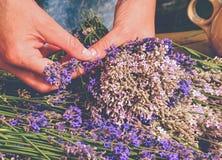 La muchacha prepara las hierbas medicinales aromáticas para los dormitorios Manojo agradable Fotos de archivo