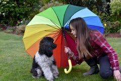 La muchacha protcted su pequeño perro Fotografía de archivo libre de regalías