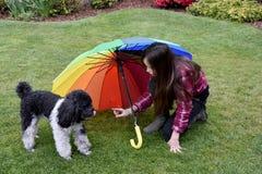 La muchacha protege su pequeño perro Imagen de archivo libre de regalías