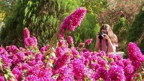 La muchacha que camina en el parque y toma imágenes almacen de metraje de vídeo