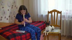 La muchacha que juega la flauta y el perro está gritando almacen de video