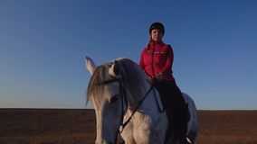 La muchacha que se sienta en un caballo mira en la distancia en el campo contra un cielo Cámara lenta almacen de video