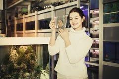La muchacha que sostiene el envase de plástico con los pescados coloridos grandes cría el disco Imágenes de archivo libres de regalías