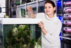 La muchacha que sostiene el envase de plástico con los pescados coloridos grandes cría el disco Fotos de archivo