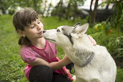 La muchacha quiere besar el perro fotografía de archivo libre de regalías