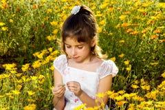 La muchacha quita los pétalos de un Wildflower Foto de archivo