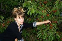 La muchacha recoge una cereza dulce Foto de archivo