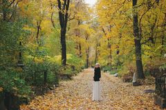 La muchacha rubia en una blusa negra y el blanco bordean la situación en el parque en el bosque del otoño Foto de archivo libre de regalías