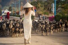 la muchacha rubia en vietnamita viste multitud de las cabras de los relojes Fotografía de archivo