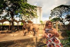 La muchacha rubia hace Selfie por el elefante en parque zoológico de la ciudad Imagenes de archivo