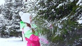 La muchacha sacude la nieve de la rama de árbol en la niñez feliz del bosque Diversión del invierno metrajes