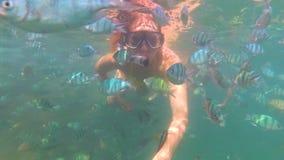 La muchacha se baña en el mar con los pescados Buceo con escafandra en máscaras Imagen de archivo