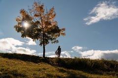 La muchacha se está colocando en una colina al lado de un árbol solo Imagen de archivo