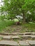 La muchacha se sienta en los pasos del vintage en un parque verde imagen de archivo