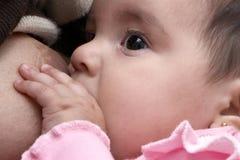 La muchacha seis meses Fotografía de archivo libre de regalías