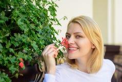 La muchacha sienta el aroma de las flores de la aspiración del café La terraza hermosa atrae a clientes Plantas como decoración n imagen de archivo