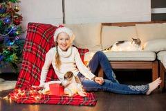 La muchacha sonriente con los animales domésticos acerca al árbol de navidad en casa Imagen de archivo libre de regalías