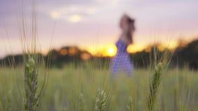 La muchacha sonriente está caminando a través del campo de trigo y da vuelta en la puesta del sol almacen de metraje de vídeo