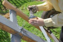 La muchacha sostiene un cepillo y un tarro de pintura gris fotografía de archivo