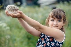 La muchacha sostiene un erizo espinoso en sus manos foto de archivo libre de regalías
