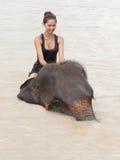 La muchacha tiene baño con el elefante Fotografía de archivo