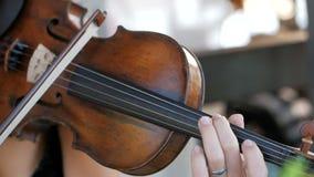 La muchacha toca el violín en la celebración de la boda