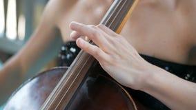La muchacha toca el violoncelo en la celebración de la boda metrajes