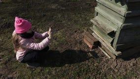 La muchacha toma la imagen de la colmena de la abeja en smartphone almacen de video