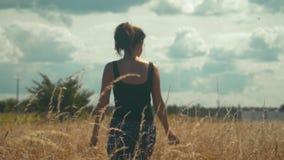 La muchacha triste camina a lo largo del campo de oro en un día soleado brillante almacen de metraje de vídeo