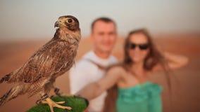 La muchacha y el individuo guardan a mano el águila Cámara lenta almacen de video