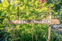 La muestra 'guarda el verde de Bali 'en el fondo tropical del verdor del latigazo Como concepto de protección del medio ambiente fotos de archivo