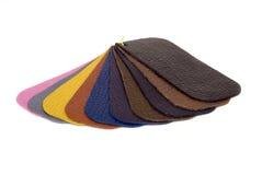 La muestra de cuero colorea el catálogo Foto de archivo