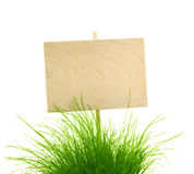 La muestra de madera vacía con la hierba verde fresca/aisló en blanco Imágenes de archivo libres de regalías