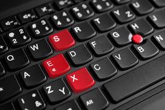 La muestra del sexo destacó en rojo en el teclado del ordenador portátil Fotos de archivo