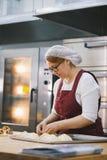 La mujer adulta en vidrios y delantal cuece las tortas en la panadería fotos de archivo libres de regalías