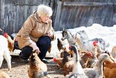 La mujer adulta feliz cuida pequeños cabras y pollos Imagenes de archivo