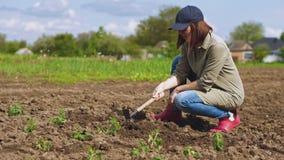 La mujer afloja el suelo antes de plantar alm?cigos metrajes