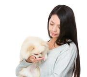 La mujer alimenta su perro pomeranian Fotos de archivo libres de regalías