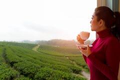 La mujer asiática puso mañana fresca del suéter rojo que bebía té caliente y mirando hacia fuera la ventana para vea la granja de foto de archivo
