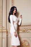 La mujer atractiva hermosa en la colección de moda del otoño del vestido elegante de maquillaje moreno largo del pelo de la prima Imagen de archivo