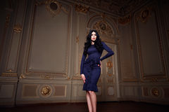 La mujer atractiva hermosa en la colección de moda del otoño del vestido elegante de maquillaje moreno largo del pelo de la prima Fotografía de archivo libre de regalías