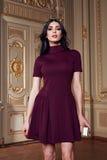 La mujer atractiva hermosa en la colección de moda del otoño del vestido elegante de maquillaje moreno largo del pelo de la prima Foto de archivo